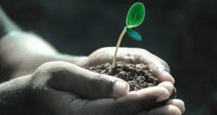 خلقنا من تراب فكيف لا نُنبت الزهور.. بقلم الأستاذ: بوعلام سعيدي.. موقع مقال