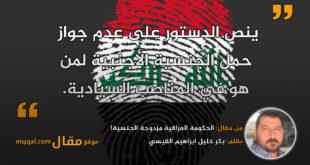 الحكومة العراقية مزدوجة الجنسية!|| بقلم: بكر خليل ابراهيم القيسي|| موقع مقال
