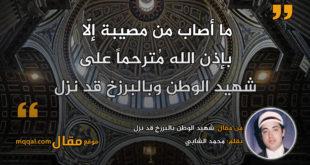 شهيد الوطن بالبرزخ قد نزل|| بقلم: محمد الشابي|| موقع مقال