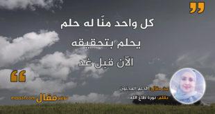 الحلم المجنون . بقلم: نورة طاع الله || موقع مقال
