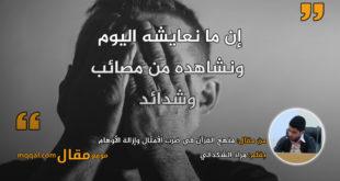 منهج القرآن في ضرب الأمثال وإزالة الأوهام . بقلم: مراد الشكدالي || موقع مقال