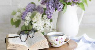 قلة الاهتمام بالقراءة والمطالعة في كورونا. بقلم: رسل المعموري    موقع مقال