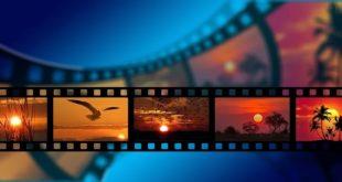 مهرجان الأقصر للسينما الإفريقية وكورونا. بقلم: ميادة مدحت || موقع مقال