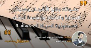 ينام التاريخ ويصحو المجد بصوتك. بقلم: محمد البعوم