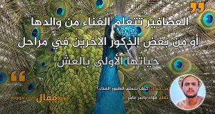 كيف تتعلم الطيور الغناء؟ بقلم:فؤاد ياسر عامر|| موقع مقال