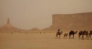 بوصلة السياحة في العالم... بقلم: فراس الألمعي... موقع مقال