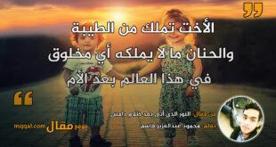 النور الذي أتى بعد ظلام دامس. بقلم: محمود عبدالعزيز قاسم || موقع مقال