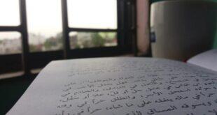 مفهوم النص بين القديم والحديث (4) دكتور/ إبراهيم محمد أحمد الدسوقي || موقع مقال