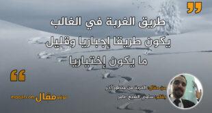 الغربة من منظور آخر. بقلم: سامي الشيخ عامر || موقع مقال