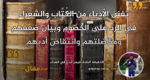 الحقيقة البلجاء فيمن أبدع في الهجاء. بقلم: محمد بوعنونو || موقع مقال