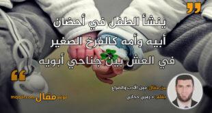 بين الأدب والصراع. بقلم: د.رمزي حجازي || موقع مقال