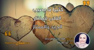 القلب قبل العقل يختار. بقلم: نورة طاع الله || موقع مقال