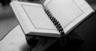 منهج القرآن في الرد على أعداء الإسلام. بقلم الكاتب: د. أحمد البخاري ||موقع مقال