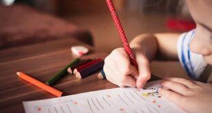 الأساتذة المتعاقدون ودورهم في انحطاط مستوى التعليم الرسمي في لبنان... بقلم : زكي عبد الحق... موقع مقال