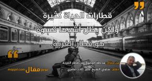 محطة الوصول من قطار الغربة. بقلم: سامي الشيخ عامر كاتب مصري || موقع مقال